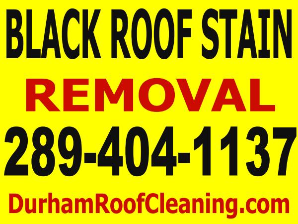 Durham Roof Cleaning