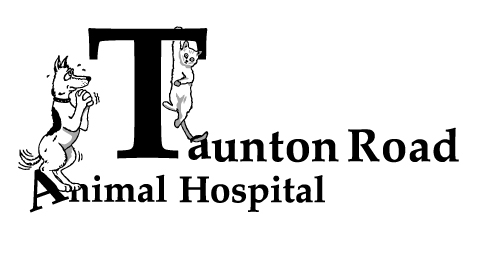 Taunton Road Animal Hospital