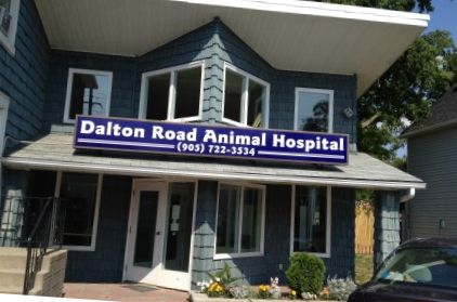 Dalton Road Animal Hospital company logo