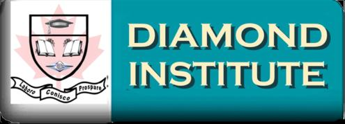 Diamond Institute of Business company logo