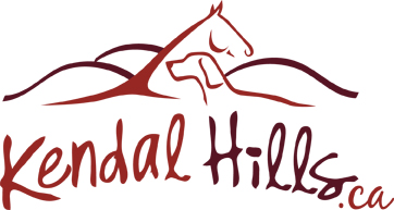 Kendal Hills Country Vacations company logo